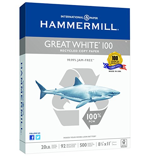 Hammermill Paper Great White 100% Recycled Copy Paper, 8.5 x 11 Inch,  500 Sheets /1 Ream 086790