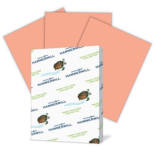 Hammermill Colored Paper, Salmon Printer Paper, 24lb, 8.5×11 Paper, Letter Size, 500 Sheets / 1 Ream, Pastel Paper, Colorful Paper 103120R