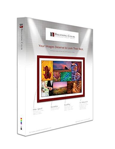 21 mil, 405 gsm, Poly-Cotton Inkjet Canvas sheets-13-x-19-inch-25sh – 800M Matte Canvas