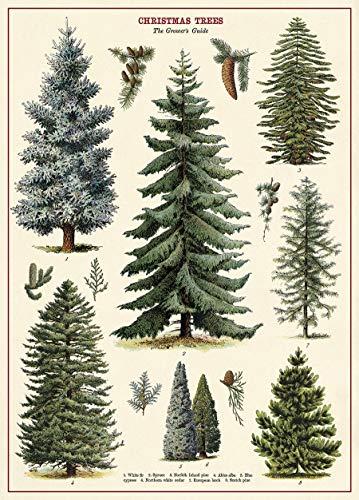 Cavallini & Co. Christmas Tree Chart Decorative Paper Sheet