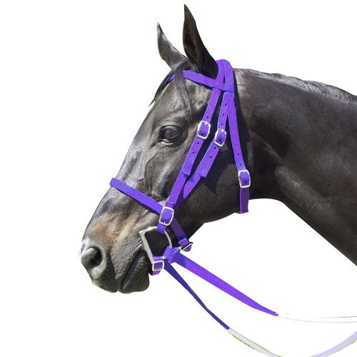 Top 9 Bridles For Horses – Horse Halters